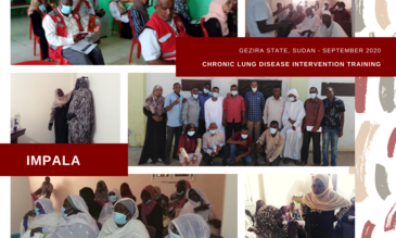 Collage of images taken during training in Gezira State, Sudan