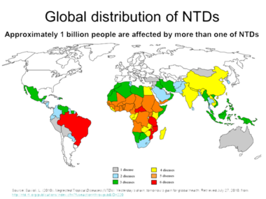 Image result for Neglected tropical diseases map