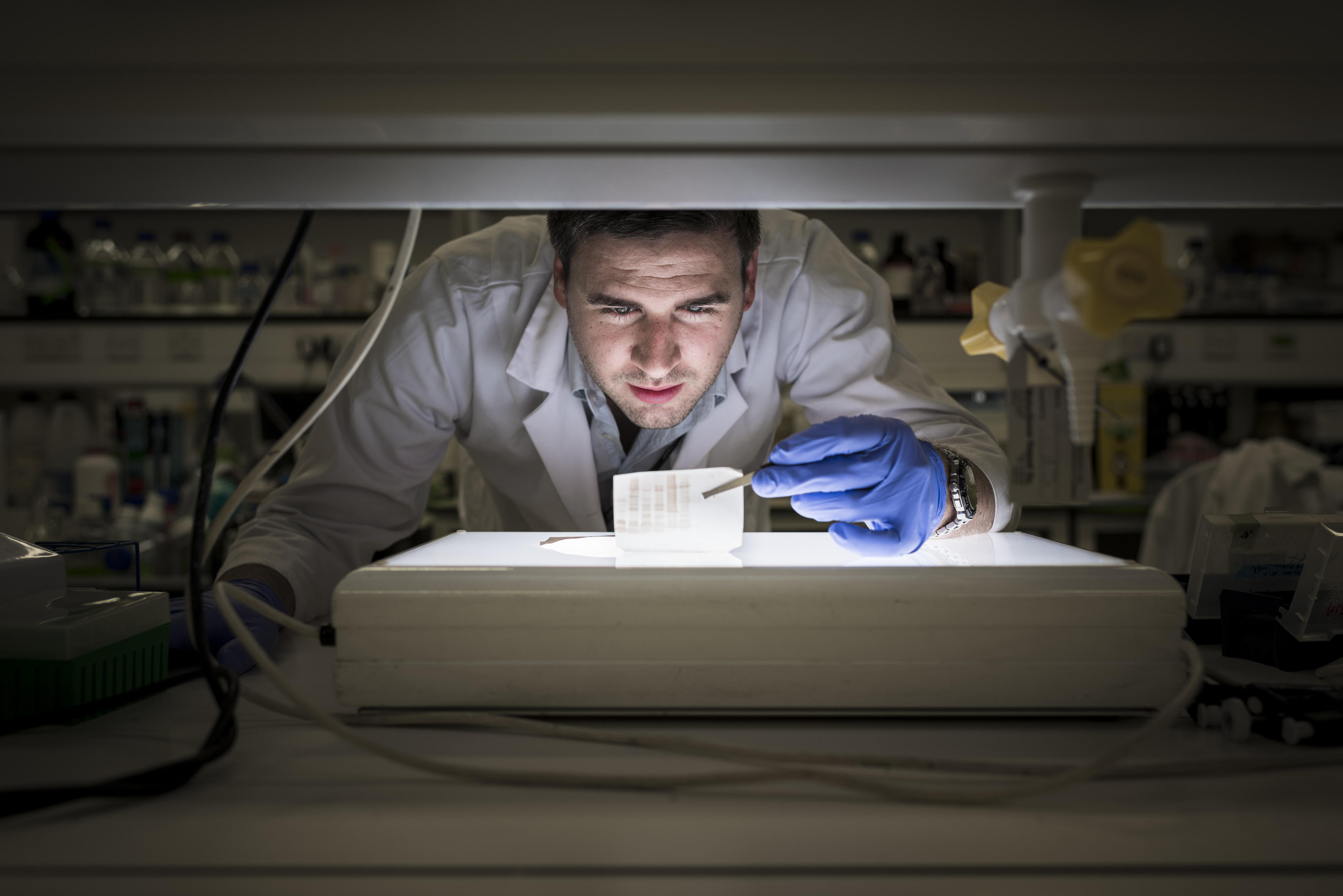 Nick Casewell in the laboratory studying toxin proteins
